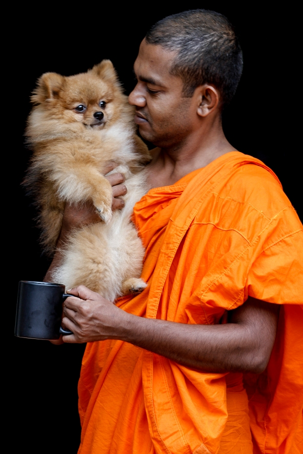 Buddhist Monk is seen playing with a puppy while holding a mug on an evening at Temple of Buddhist Maha Vihara, Brickfields, Kuala Lumpur on August 22, 2016. Picture by Seth Akmal.