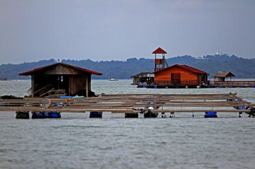 A raft house or known as Rumah Rakit is used to set fish cages by the fishermen for fish breeding in Kampung Pendas,Gelang Patah,Johor on March 12,2015.-The Malaysian Insider pic by Seth Akmal
