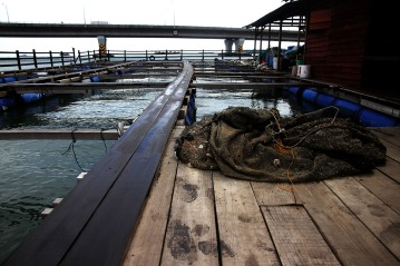 Development is affecting raft houses and badly impacted the fish breeds Kampung Pendas,Gelang Patah,Johor on March 12,2015.-The Malaysian Insider pic by Seth Akmal