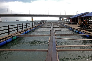 Most of the raft houses are usually empty, because there are no more breeds and some raft houses owner wants to sell it in Kampung Pendas,Gelang Patah,Johor on March 12,2015.-The Malaysian Insider pic by Seth Akmal