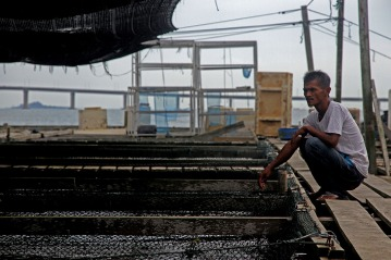 A disappointed man looking at the empty fish cages, as Raft House supposedly have many fishes to breed in Kampung Pendas,Gelang Patah,Johor on March 12,2015.-The Malaysian Insider pic by Seth Akmal